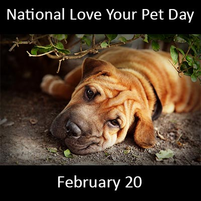 National-Love-Your-Pet-Day